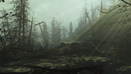 FO4 FH road