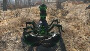 FO4 Glowing Radscorpion
