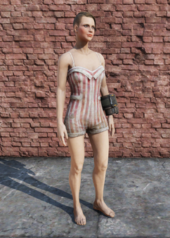 FO76 Swimsuit Female