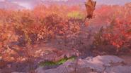 Fallout 76 Fissure site Omicron