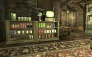 FO3 My Megaton house Pre-war theme Bookcase