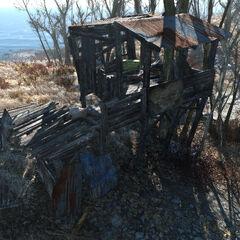 Settlement shack