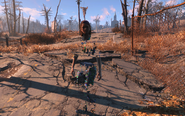 FO4 bug with char textures