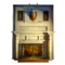 FO76LR Fireplace Door
