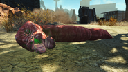 FO4NW Bloodworm9