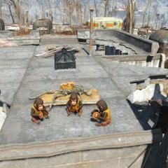 Мавпочки на даху офісу