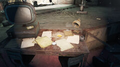Fo4CC Director's notes