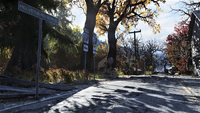 FO76 Locations Forest 3