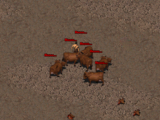 Fallout 2 special encounters