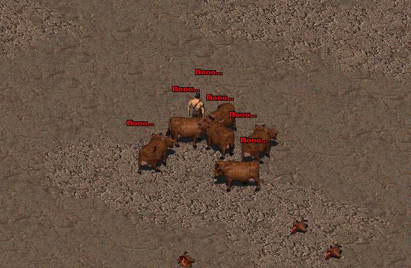 fallout 2 pariah dog