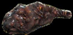 FO76 bloatfly loaf