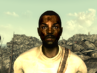 FO3Wasteland doctor11