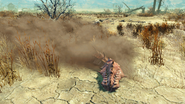 FO4NW Bloodworm4