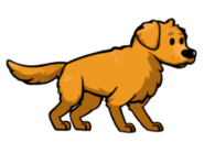 FOS Dog1