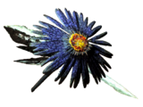 Aster (consumable)