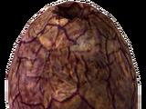 Huevo de sanguinario (Fallout: New Vegas)