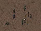 Hub Patrol
