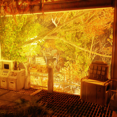 The cave and control terminal, with Vault 94's door shrouded in vegetation in the background