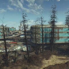 Вид на готель з-за дерев