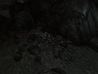 FO3 Dead wasteland merchant