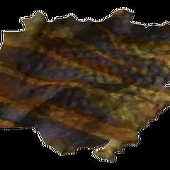 Шкура золотого гекона або шкура зеленого гекона