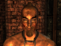 FO3TPPittRaider5.png