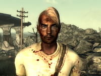 FO3Wasteland doctor14