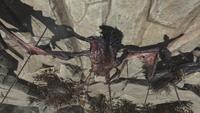 FO76WL Vulture corpse head