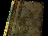Elijah's Watch journal