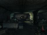 Meresti service tunnel