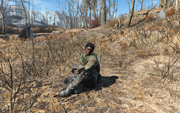 Fo4 Irradiated Woman