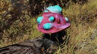 Fo76 Mutated Flora Blastcap