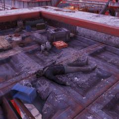 Rooftop camp