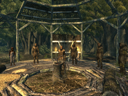 FO3 Ceremony of Purification