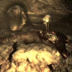 A bizarre desecration in the cavern's tunnel