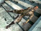 Мёртвый регулятор