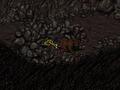 Cornelius' gold watch Modoc caves.png