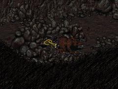Cornelius' gold watch Modoc caves