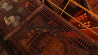 Otis pike corpse