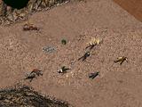 Поле битвы
