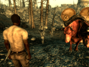 FO3BS Water caravan and BoS