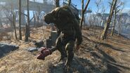 FO4 Super Mutant Epic behemoth