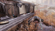 FO76 Abandoned bog town (New crew)