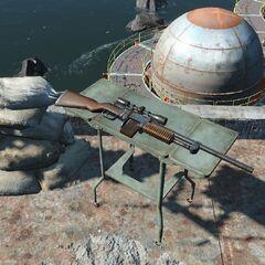 Снайперський карабін на даху