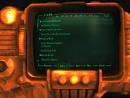 FNV Pip-Boy low texture bug