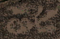 Fo2 Arroyo Hunting Grounds