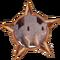 Badge-2667-2