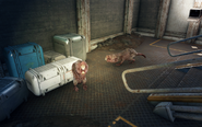 FO4 Vault81Secret MoleRats 1