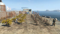 FO4 Warwick homestead (2)