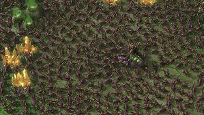 image zerg rush jpeg fallout wiki fandom powered by wikia